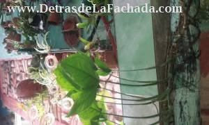 Calle 43, ave 46 y ave 48, #4608A
