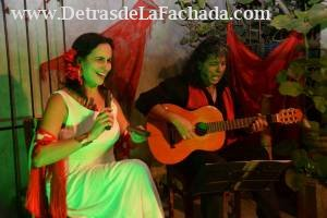 Show flamenco live by the hosts on the courtyard