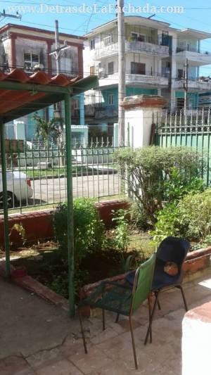 Jardin con carpos