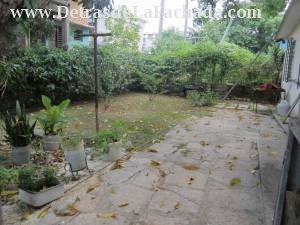 Patio cementado y de tierra con árbol de mango