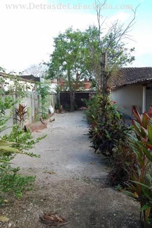 Jardín patio lateral
