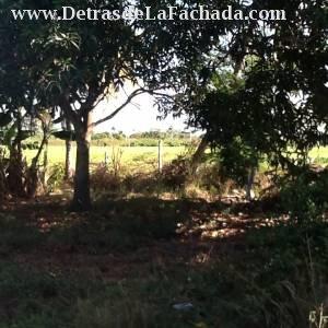 Km 11 carretera de La Coloma